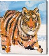 Amur Tiger Canvas Print