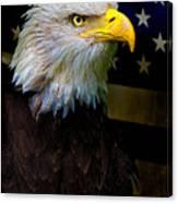 An American Icon Canvas Print