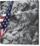 An American Winter Canvas Print