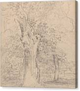 An Ancient Tree With Figures In A Landscape Canvas Print