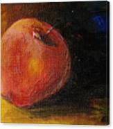 An Apple - A Solitude Canvas Print