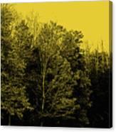 An Autumnal Visit Canvas Print