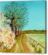 An English Footpath Canvas Print
