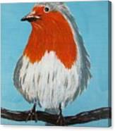 An English Robin Canvas Print