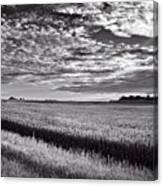 An Iowa Sunset Canvas Print