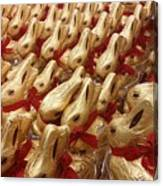 An Ocean Of Bunnies Canvas Print