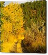 An October Path   Canvas Print