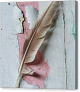 An Old Door And Feather Canvas Print