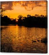 An Orange Pond. Canvas Print