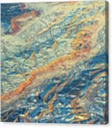 An Unprescedented View Canvas Print
