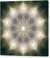 Ancient Light X Canvas Print
