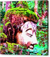 Ancient One Canvas Print