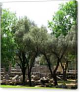 Ancient Ruins Temple Grounds 2 Canvas Print