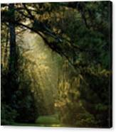 And A New Day Will Dawn... Canvas Print
