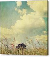 And The Livin's Easy Canvas Print
