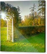 And The Trellis Canvas Print