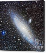 Andromeda Galaxy With Companions Canvas Print