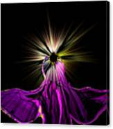 Angel In The Night Canvas Print