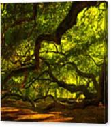 Angel Oak Limbs 2 Canvas Print