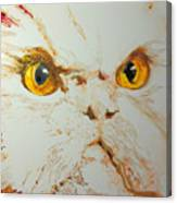 Angry Cat. Canvas Print
