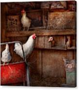 Animal - Chicken - The Duck Is A Spy  Canvas Print