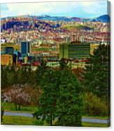 Ankara Canvas Print