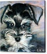 Annabelle Canvas Print