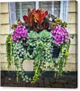 Annapolis Flower Box Canvas Print