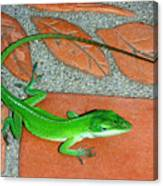 Anole On Chair Tiles Canvas Print