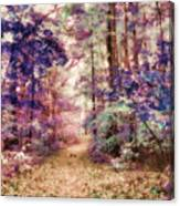 Another Season Xiii Canvas Print