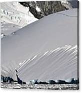 Antarctic Bliss  Canvas Print