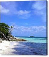 Antigua Beach Canvas Print