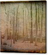 Antique Amber Golden Woods Canvas Print
