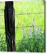 Antique Fence Post Canvas Print