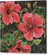 Antique Hibiscus Black 2 Canvas Print
