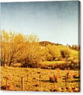 Antique Weathered Countryside Canvas Print