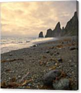 Anxiety Morning On The Ocean Shore. Canvas Print