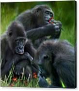Ape Moods Canvas Print