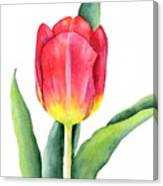 Apeldoorn Canvas Print