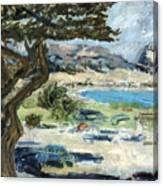 Apollo Bay Canvas Print
