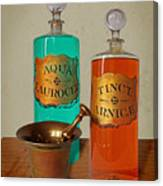 Apothecary Bottles And Brass Pestle And Mortar Canvas Print