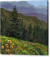 Appalachian Color Canvas Print