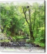 Appalachian Creek Canvas Print