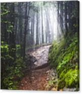 Appalachian Light Canvas Print