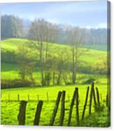 Appalachian Spring Morning Canvas Print