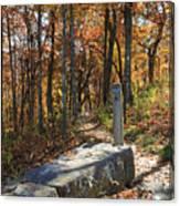 Appalachian Trail In Shenandoah National Park Canvas Print