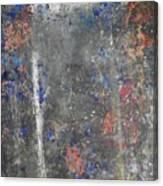 Appearance Canvas Print