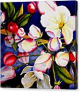 Apple Blossom Time Canvas Print