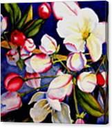 Apple Blossom Time Canvas Print