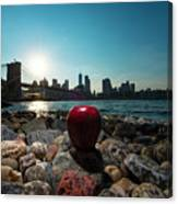 Apple On The Rocks Canvas Print
